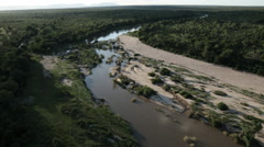 Aerial Afican Bush, River,  Limpopo - stock footage