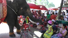 Elephant collecting money after show,Ayuthaya,Thailand Stock Footage