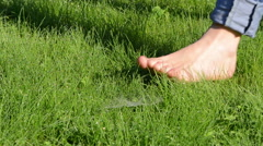 Barefoot woman with tucked jeans walk on dewy morning grass Stock Footage