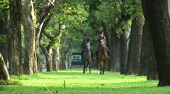 Police on horse in park,Bangkok,Thailand Stock Footage
