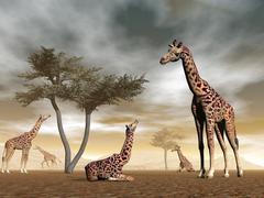 Giraffes in the savannah - 3D render - stock illustration