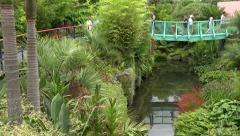Hamilton botanical gardens, tropical garden bridge, New Zealand Stock Footage
