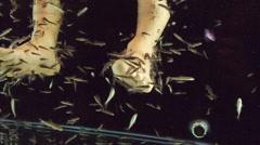 Peeling skin feet of tropical fish. Stock Footage