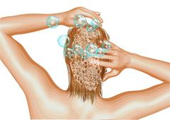 hairstyle shampoo - stock illustration