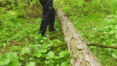Hiking through the forest. Tree trunk lying on the ground and legs of a man Stock Footage