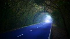 4K UHD Driving through Laurel tree tunnel Unesco Parque Nacional Garajonay - stock footage