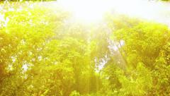 Beautiful Waterfall with Sound under Etherial Sun Rays in Thailand Stock Footage