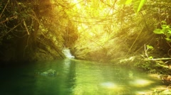 Beautiful, Stream Fed Jungle Pond in Southern Thailand Stock Footage