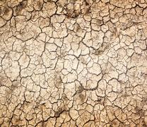 Drought, the ground cracks Kuvituskuvat