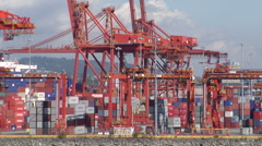 Large shipping cranes moving shipping containers Stock Footage
