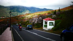 4K UHD Bus stop on the way Santiago del Teide Tenerife Canary islands Spain Stock Footage