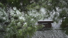 Pine trees under of snow and blank, wood bench, aerial shoot Stock Footage