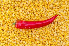Paprika on corn as background Stock Photos