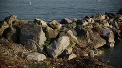 Lake Geneva Stock Footage