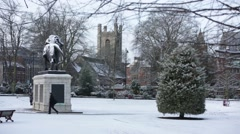 English Park in the snow Stock Footage