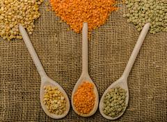 Variations lentils, lentils bio Stock Photos
