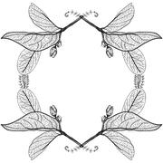 Leaves contours on a white background. floral border. Sketch frames hand-draw Stock Illustration