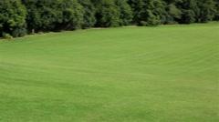 Beautiful green lawn Stock Footage