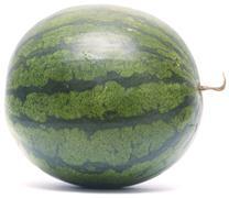 Whole watermelon Stock Photos