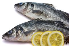 Sea bass fish whit lemon and star anise on withe background - stock photo