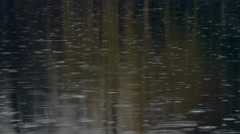 Rain drops in pond, magical #2 Stock Footage