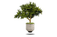 green tree growing out of a bulb - stock illustration