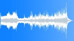 T Stobierski - Skunk Splash (30-secs version 2) - stock music