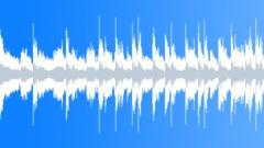 T Stobierski - Skunk Splash (Loop 05) - stock music