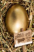 Composite image of easter egg hunt sign - stock illustration