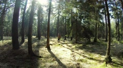 Hiker in Dark Forest with sunny patches in 4K Stock Footage