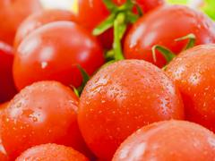 ripe cherry tomatoes - stock photo