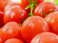 Stock Photo of ripe cherry tomatoes