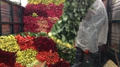 Roses track transportation Stock Footage