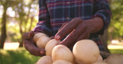 Healthy nutritious and organic potatoes Stock Footage