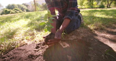 Stock Video Footage of Hands carrying a sapling planting new tree