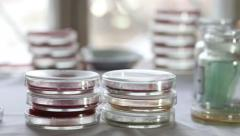 Stacks of Petri dishes in medical laboratory Stock Footage