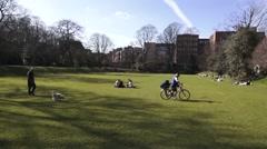 Dublin Sunny Gardens Stock Footage