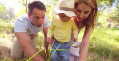 Parents teaching their toddler about nature - stock footage