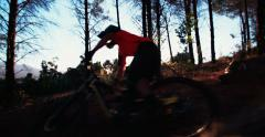 Mountain biker on a dirt path in a wilderness forest - stock footage
