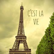 Eiffel Tower and text cest la vie, that is life in french Stock Photos