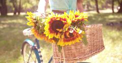Detail of sunflowers in bicycle basket with girl in park Stock Footage