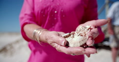 Senior adult woman holding collection of sea shells on beach - stock footage