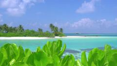 Turquoise lagoon behind the bushes in unexplored tropical island Stock Footage
