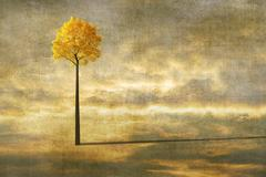 Surreal landscape with lonely tree Stock Illustration