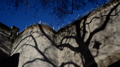 Shadow of a tree moving along a wall Stock Footage