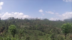 View across a tea plantation in the Sri Lankan hill country Stock Footage