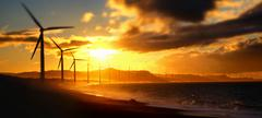 Wind turbine power generators silhouettes at ocean coastline at sunset Stock Photos