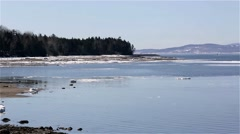 Stock Video Footage of View of tip of Sears Island in Searsport Maine