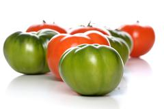 Stock Photo of Studio shot of tomatoes on white background