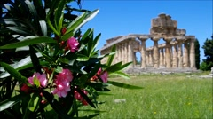 Archaeological Ruins Of Paestum in Italy Stock Footage